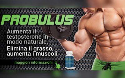 integratore di tribulus terrestris PROBULUS