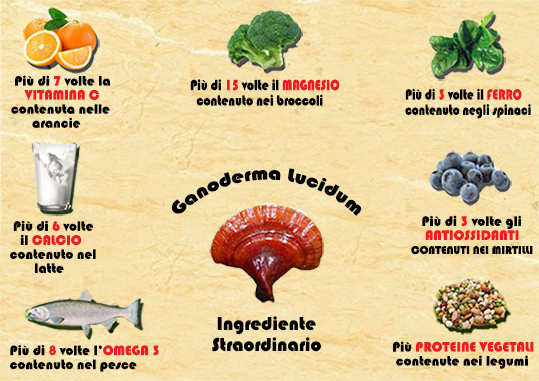 proprietà antiossidanti fungo reishi