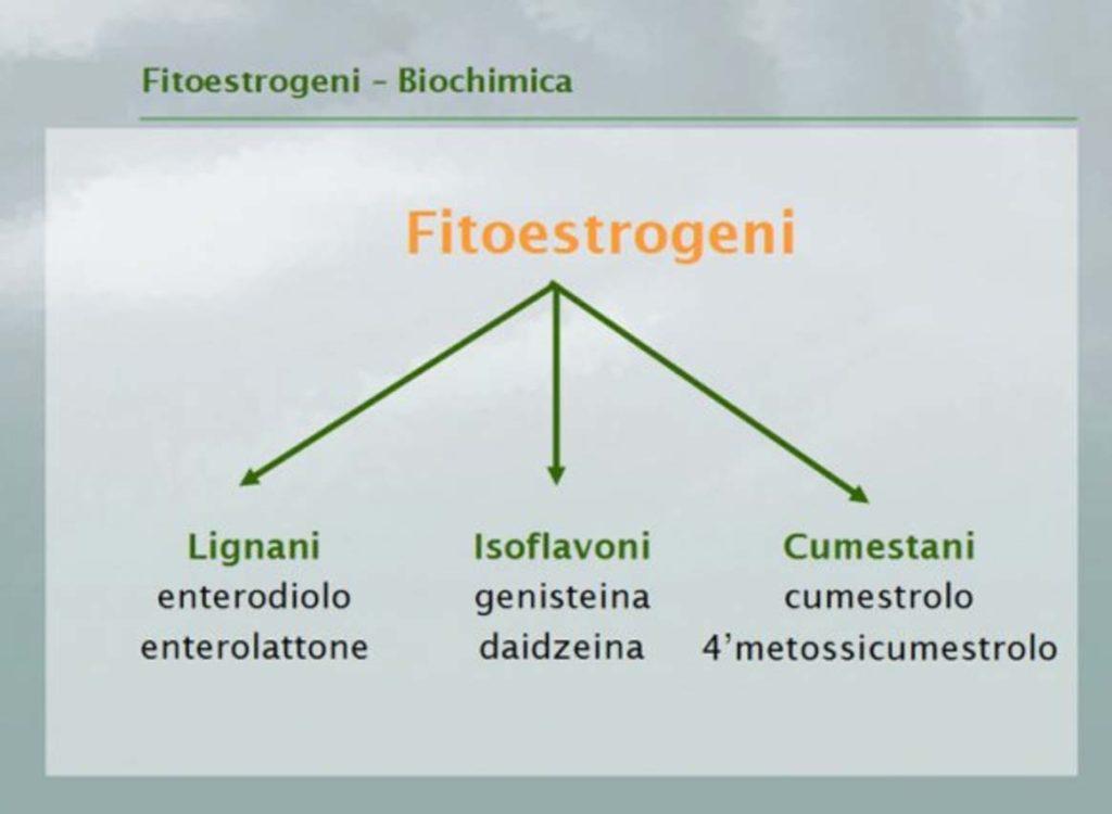 fitoestrogeni