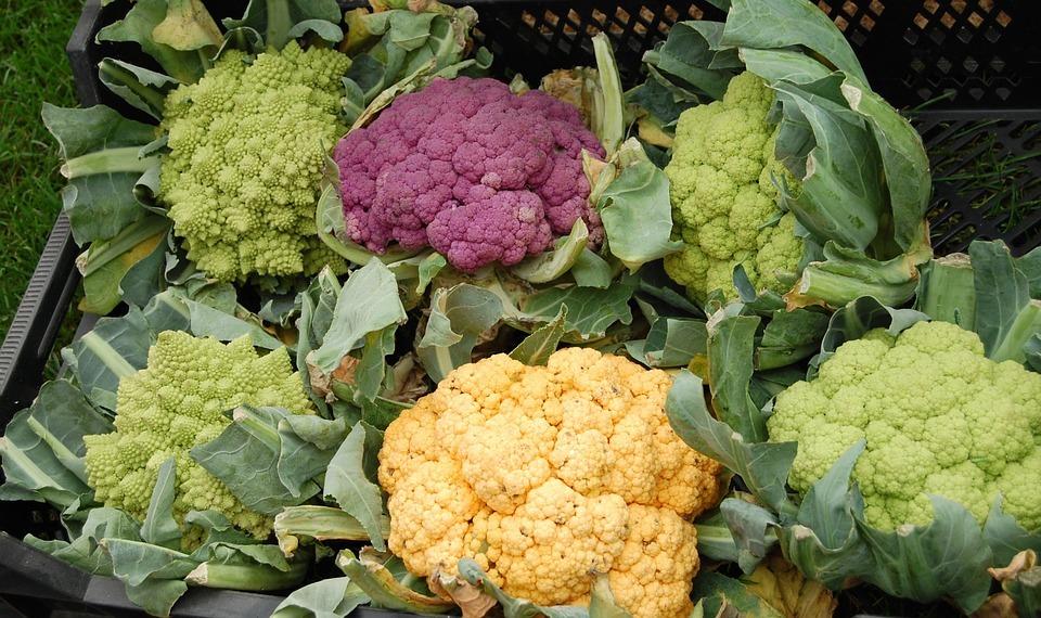 broccolo per aiutare il metabolismo