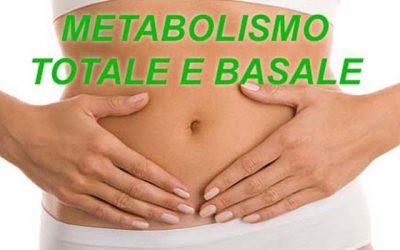 Metabolismo totale e basale