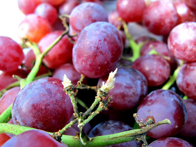 Uva rossa ricca di polifenoli
