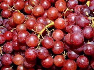 uva rossa
