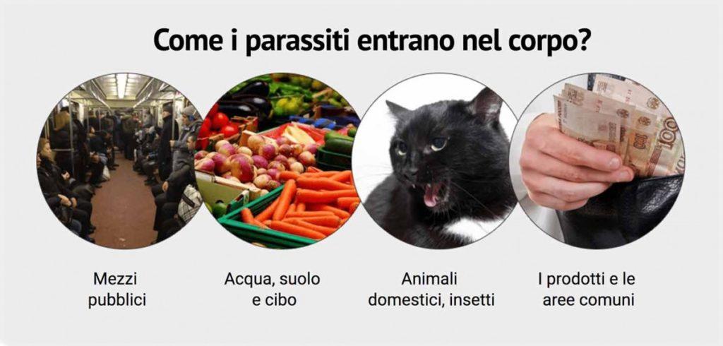 Come entrano i parassiti intestinali