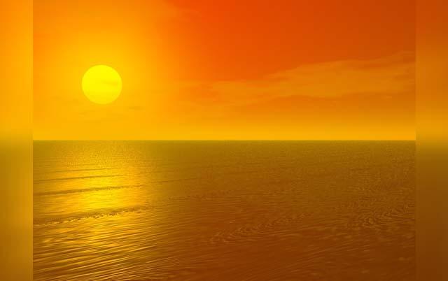 Sole fonte di vitamina D