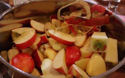 Pectina di mela