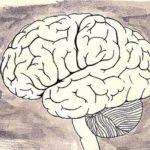 Cosa sono le endorfine e che ruolo svolgono nel nostro corpo