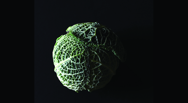 Cavolo nero che proprietà antiossidanti possiede?