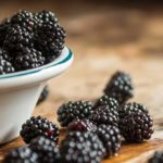 Le proprietà antiossidanti delle more: come usarle in cucina