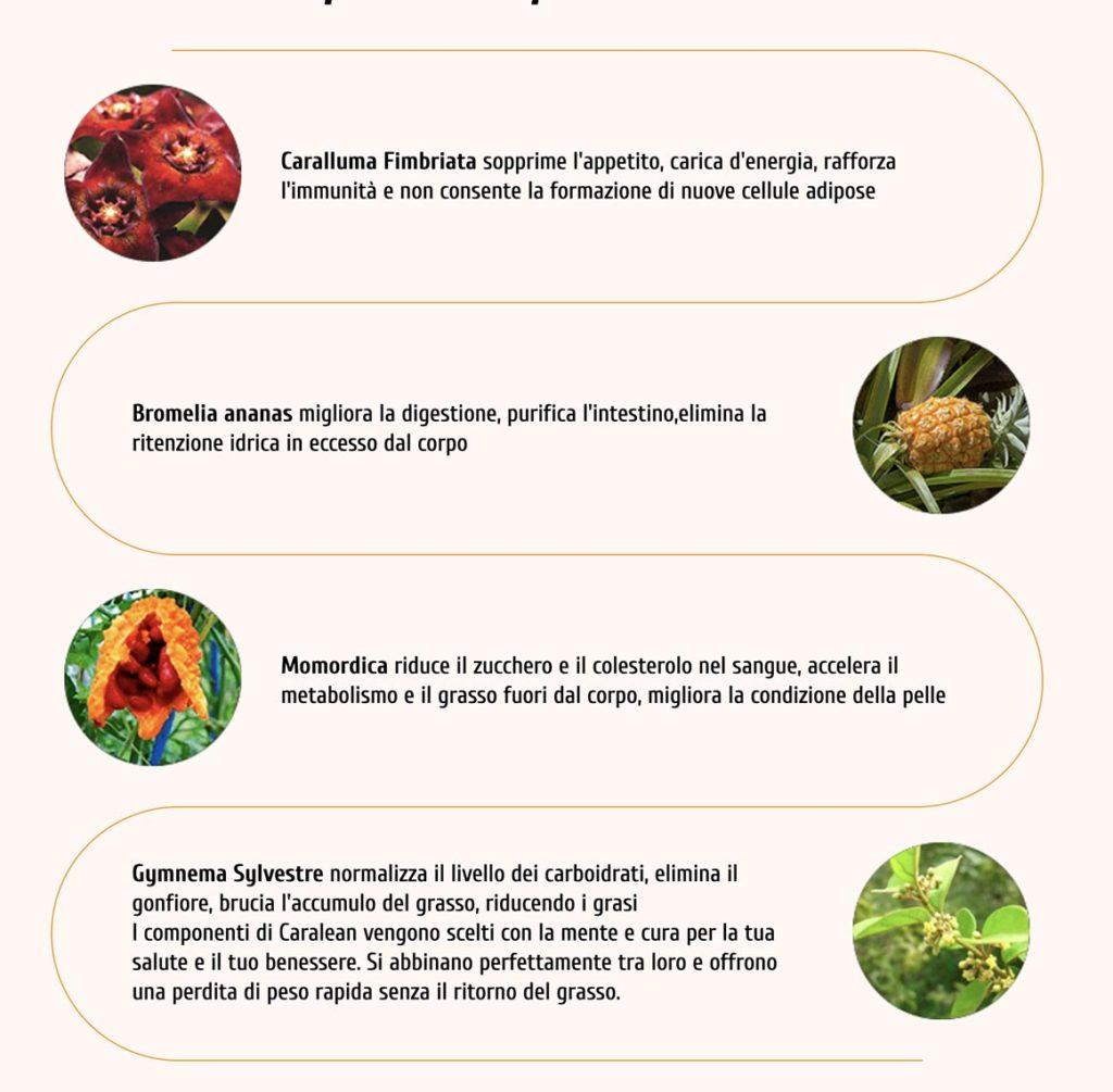 Ingredienti Caralean