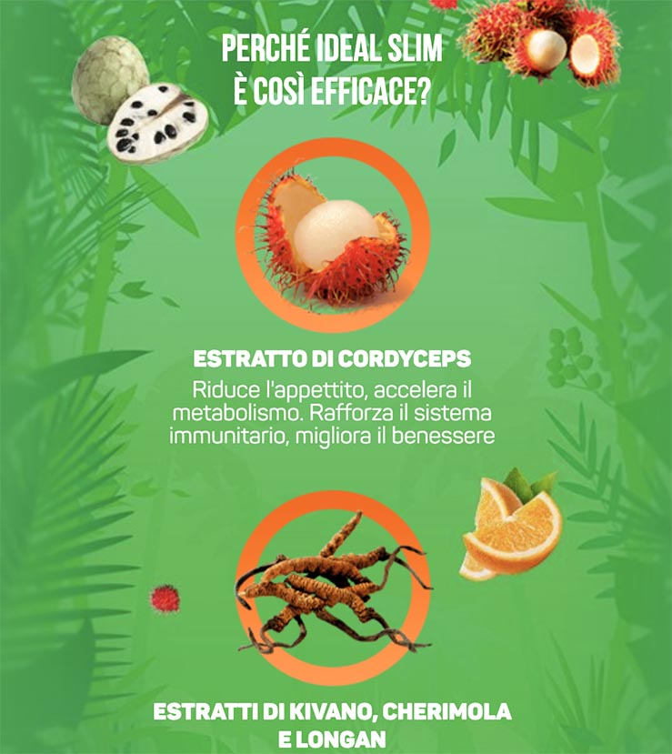 Ingredienti Idealslim