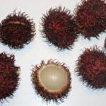 Rambutan che cos'è e come usarlo in cucina